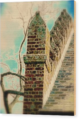 Architectural Art Wood Print by Cindy Wright