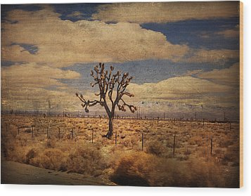 As We Go Down Life's Lonesome Highway Wood Print by Laurie Search