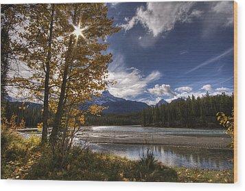 Athabasca River With Mount Fryatt Wood Print by Dan Jurak