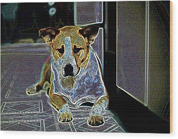 Australian Cattle Dog Boxer Mix Wood Print by One Rude Dawg Orcutt