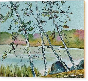 Autumn Birches Wood Print by Brenda Owen