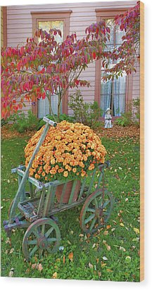 Autumn Display I Wood Print by Steven Ainsworth