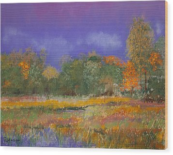 Autumn In Nisqually Wood Print by David Patterson
