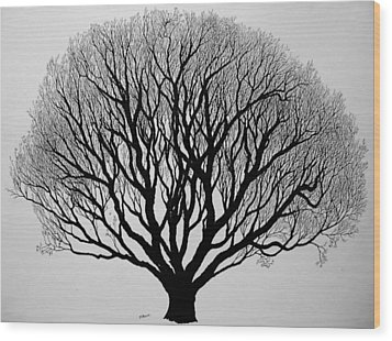 Autumn Wood Print by Marwan Hasna - Art Beat