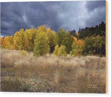 Autumn Meadow Wood Print by Carol Cavalaris