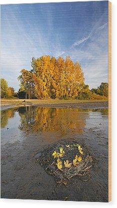 Autumn Nest Wood Print by Mircea Costina Photography