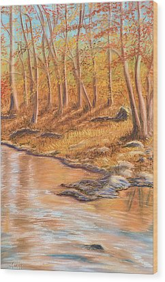 Autumn Stream Wood Print by Jan Amiss