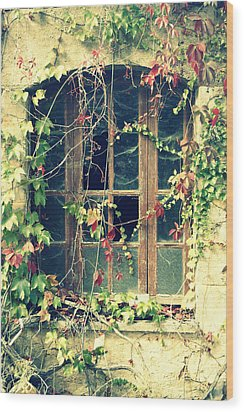 Autumn Vines Across A Window Wood Print by Georgia Fowler