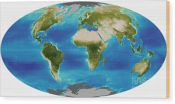 Average Plant Growth Of The Earth Wood Print by Stocktrek Images