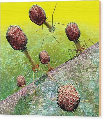 Bacteriophage T4 Virus Group 2 Wood Print by Russell Kightley