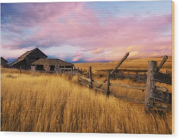 Barn And Field 2 Wood Print by Peter Olsen