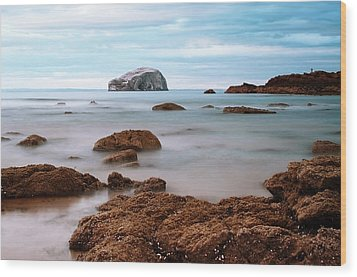 Bass Rock Wood Print by Amanda Finan
