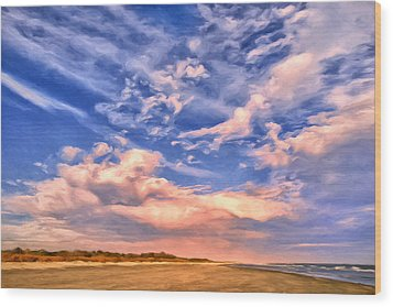 Beach At Sullivan's Island Wood Print by Dominic Piperata
