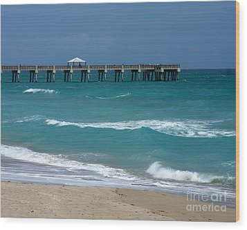 Beautiful Day At The Beach Wood Print by Sabrina L Ryan