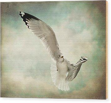 Beauty Of Flight Wood Print by Jody Trappe Photography