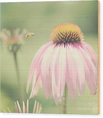 Beeautiful Wood Print by Kim Fearheiley