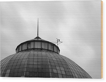 Belle Isle Anna Scripps Whitcomb Conservatory Wood Print by Gordon Dean II