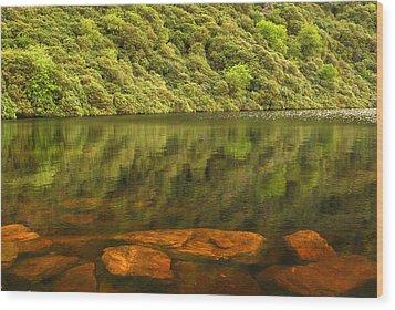 Beneath The Water Wood Print by Joe Ormonde