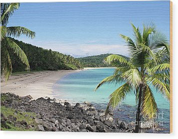 Big Corn Island Beach Nicaragua Wood Print by John  Mitchell