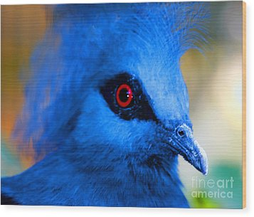 Bird's Eye View Wood Print by Tap  On Photo