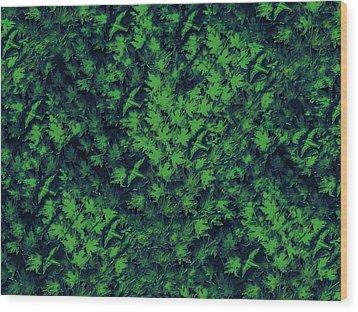 Birds In Green Wood Print by David Dehner