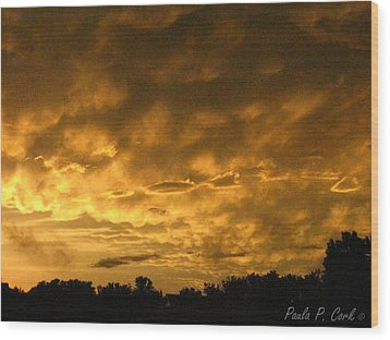 Bittersweet Sky Wood Print by Paula Cork
