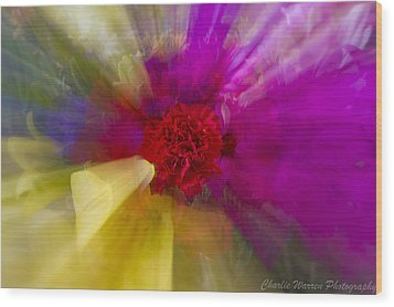 Bloom Zoom2 Wood Print by Charles Warren