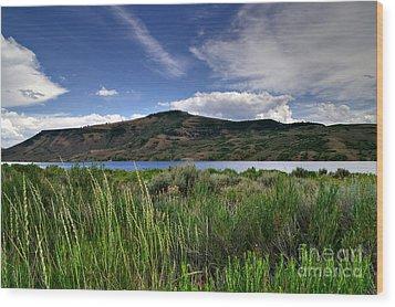 Blue Mesa Reservoir Wood Print by Michael Kirsh