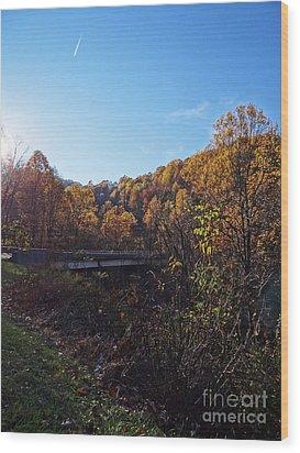 Blue Ridge 14 Wood Print by Steven Lebron Langston