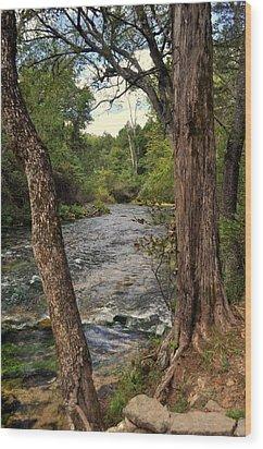 Blue Spring Branch Wood Print by Marty Koch