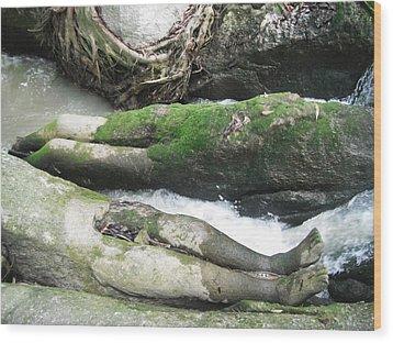 Body Rocks Wood Print by Manik Designs