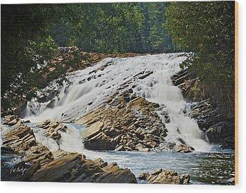 Bonnechere Falls Wood Print by Phill Doherty