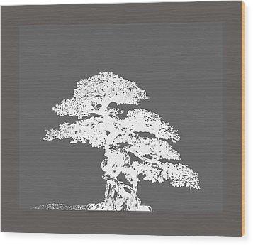 Bonsai I Wood Print by Ann Powell
