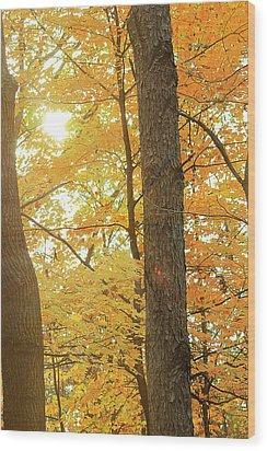 Bright Yellow Wood Print by Scott Hovind