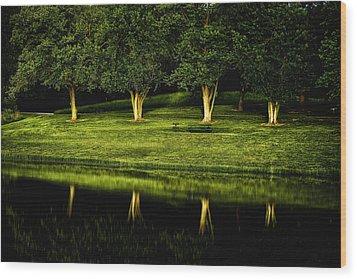 Broemmelsiek Park Green Wood Print by Bill Tiepelman