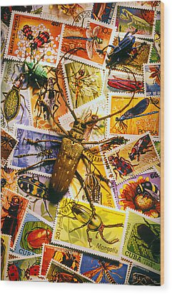 Bugs On Postage Stamps Wood Print by Garry Gay