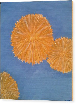 Burst Wood Print by Holly  Varner