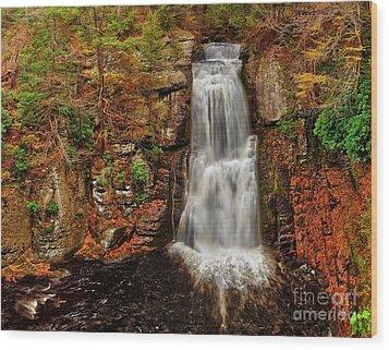 Bushkill Main Falls Wood Print by Nick Zelinsky