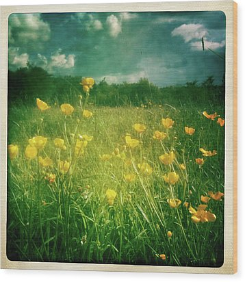 Buttercups Wood Print by Neil Carey Photography