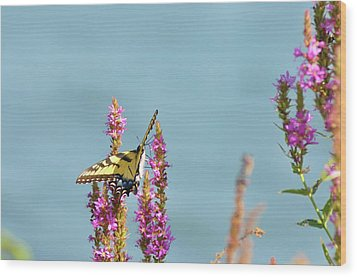 Butterfly Morning Wood Print by Bill Cannon