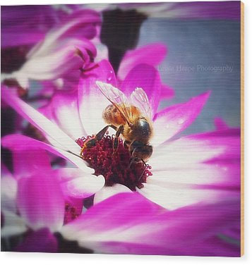 Buzz Wee Bees Ll Wood Print by Lessie Heape