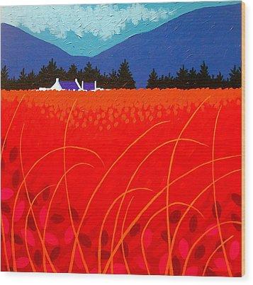 Cadmium Landscape Wood Print by John  Nolan