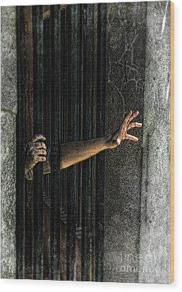 Caged 3 Wood Print by Jill Battaglia