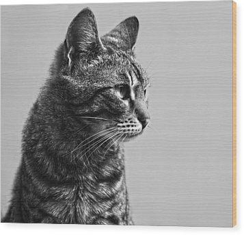 Cat Wood Print by Chelaru Catalin Ionut