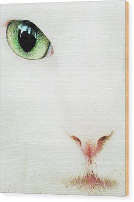 Cat Eye Wood Print by Julie Niemela