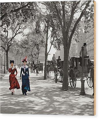 Catwalk In New York 1901 Wood Print by Steve K