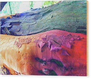 Wood Print featuring the digital art Celebration by Richard Laeton