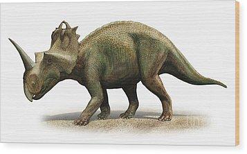 Centrosaurus Apertus, A Prehistoric Era Wood Print by Sergey Krasovskiy