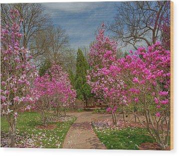 Cheekwood Gardens Wood Print by Charles Warren