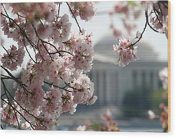 Cherry Blossom Washington Wood Print by Valia Bradshaw